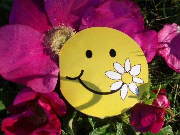 Lachen ist die beste Medizin